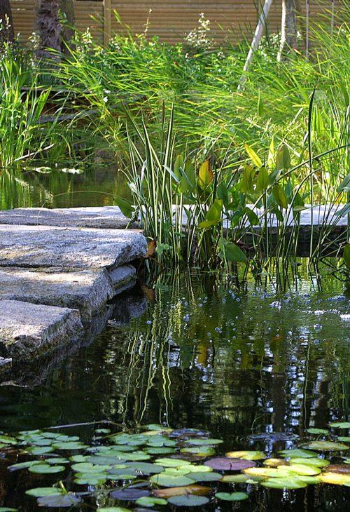 Pierres naturelles sur l'eau